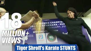 Tiger Shroff Karate Stunt In Public