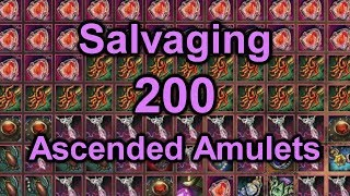 Salvaging 200 Ascended Amulets / Gambling for Salvaged Excellence / Guild Wars 2