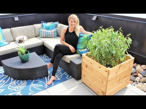 The Modern Cedar Planter Box - Easy DIY Video
