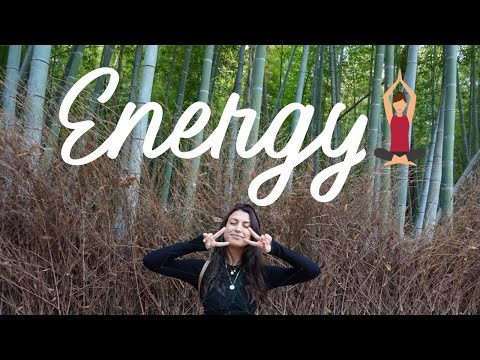 HAVE MORE ENERGY: 24-Hour Guide to Living in Harmony with Your Body's Energy Highway/Qi & Meridians