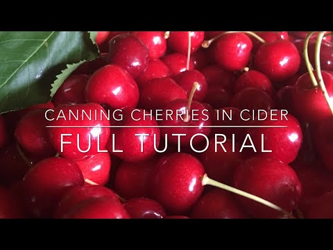 Canning Cherries in Cider: FULL CANNING TUTORIAL