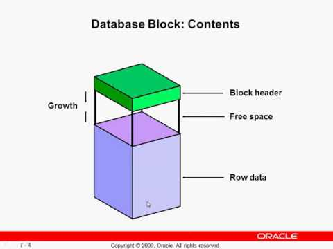 oracle data storage hindi/urdu