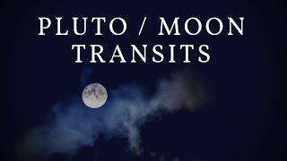 pluto in retrograde transiting 6th house (capricorn 6th