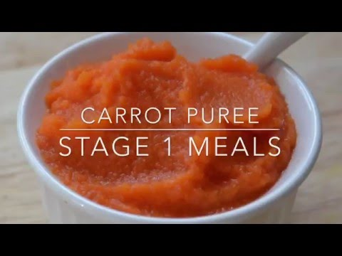 Stage 1: Easy Homemade Carrot Baby Food Recipe | Sage Spoonfuls