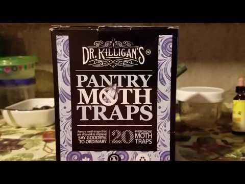 Pheromone Moth Trap vs Cheap Fly Ribbon: Totally Gross Review!