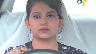 Seethamma Vakitlo Sirimalle Chettu | 23rd August 2019 | Latest Promo