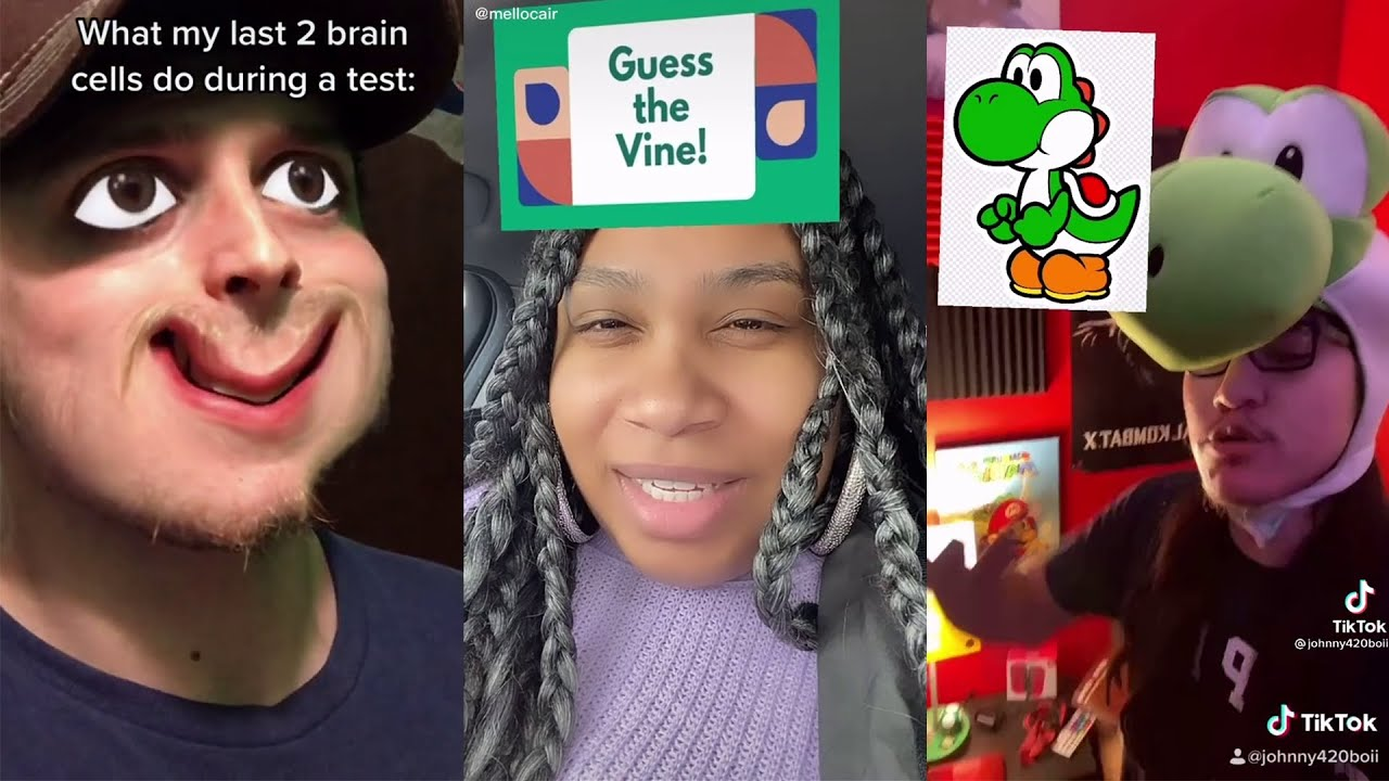 TIK TOK MEMES That Are Basically Vine 2