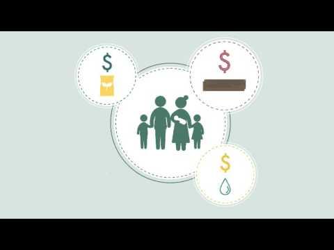 Multipurpose Cash Grants