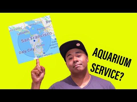 Watch Before Starting an Aquarium Service Business
