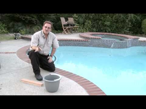 Home & Lawn Pest Control : How to Get Rid of Chipmunks