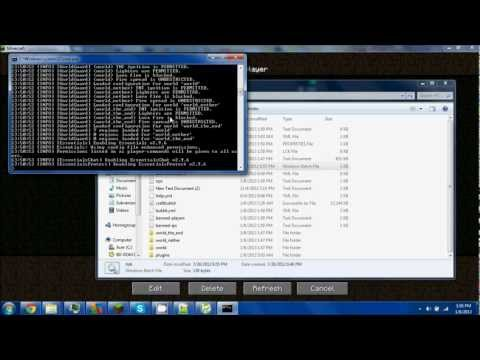 How to make a custom IP address for a Minecraft Server