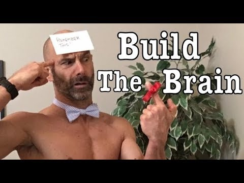Build your Memory through Strength and Cardiovascular Exercise