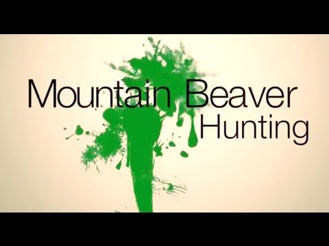 How to Hunt Mountain Beavers. Maybe.