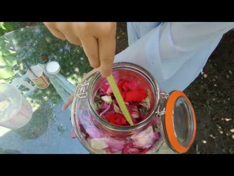 Daniela Tripa's Rose Juice