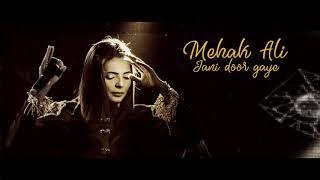Jani Door Gaye I Mehak Ali I Cover I HD Track