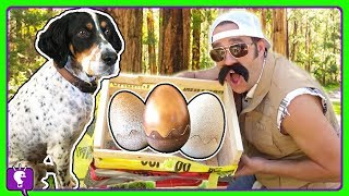 Eggs Found In Forest! What