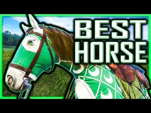 BEST Horse & BEST Horse Gear FOR FREE (Technically) - Kingdom Come Deliverance