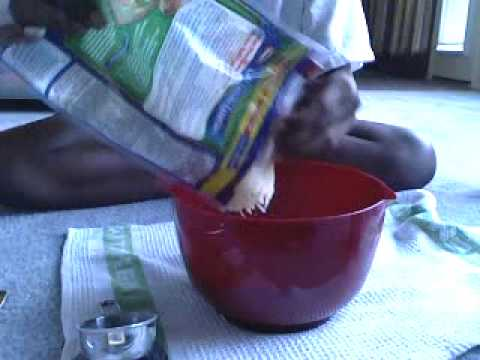 How To Make Home Made Fish Bait