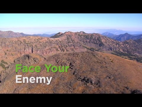 Face Your Enemy