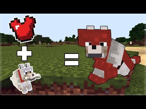 How To RIDE & ARMOR WOLF In Minecraft Pocket Edition (New Addon)