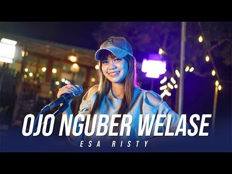 Download Lagu Esa Risty Ojo Nguber Welase Mp3