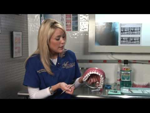 Dental Health : What to Expect During a Teeth Cleaning Appointment