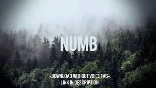 3 32 MB] Download