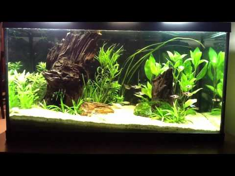 A look at the 25 gallon plus some news