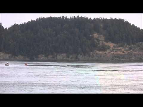 BC Ferry - Swartz Bay to Tsawwassen