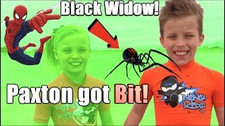 Download Paxton got bit by a BLACK WIDOW! HE is SPIDERMAN! Video