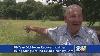 Download 81-Year-Old Texas Man Stung About 1,000 Times By Bee Swarm Video