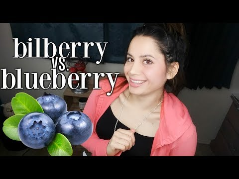 Bilberry vs Blueberry | What Is The Difference? NUTRITIONAL COMPARISON
