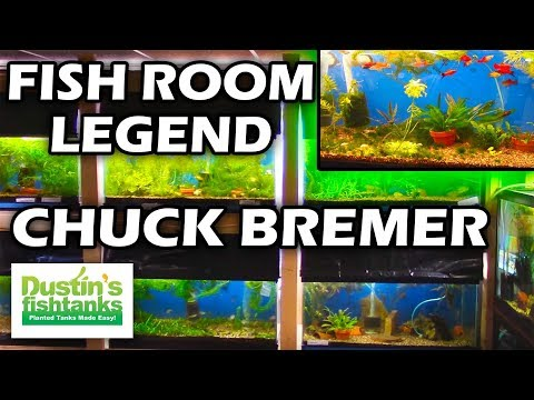 Fish Rooms - the Legend Series - Chuck Bremer Fish Room Tour Part 1