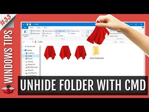 Show Hidden Files & Folders with CMD Attrib Command-Pen Drive/Flash Drive/Hard Drive/SSD/Memory Card