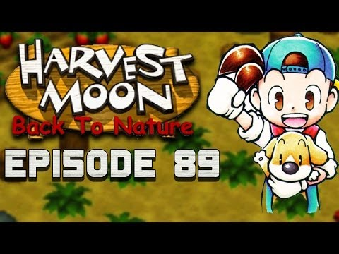 Working on the Fence | Harvest Moon | Back to Nature EP.89