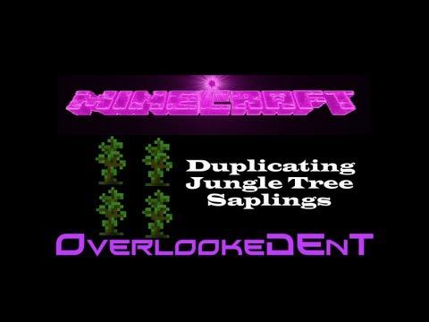 Duplicating Jungle Tree Saplings - Minecraft Xbox 360/PS3 - [Tutorial]