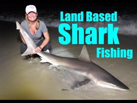 FISHING FOR BIG SHARKS - Pensacola Beach Florida (Spinner Shark & Sandbar Sharks)