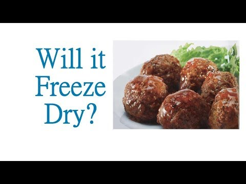 Will it Freeze Dry? - MEATBALLS from Costco - in a Harvest Right Freeze Dryer