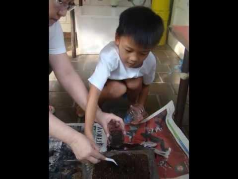 Parent Volunteer Activities - 2013