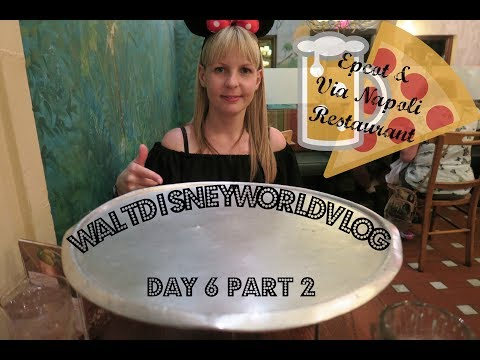 Day 6 Part 2 Epcot | Walt Disney World & Florida Vlog | April 2017