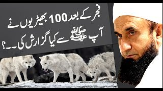 100 Wolves Request to Prophet Muhammad (PBUH) - Maulana Tariq Jameel