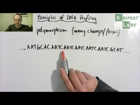 Principles of DNA Profiling