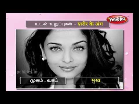 Learn Hindi Through Tamil   Spoken Hindi   Speak Hindi through Tamil   Language learning