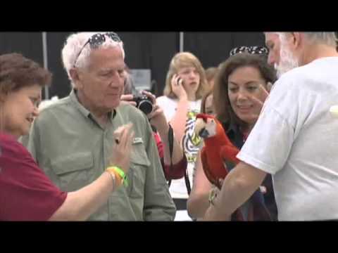 Port Arthur Bird Show