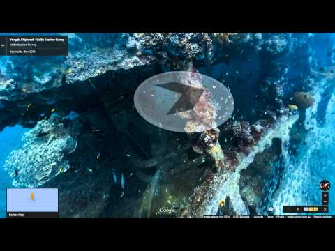 Underwater Street View imagery of Sydney Harbour and the Great Barrier Reef launches on Google Maps