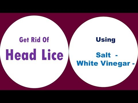 Get Rid Of Head Lice Permanently With Salt & White Vinegar