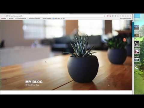 Creating a Portfolio Website with WordPress