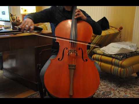 English cello W. White for sale at www.cello.se