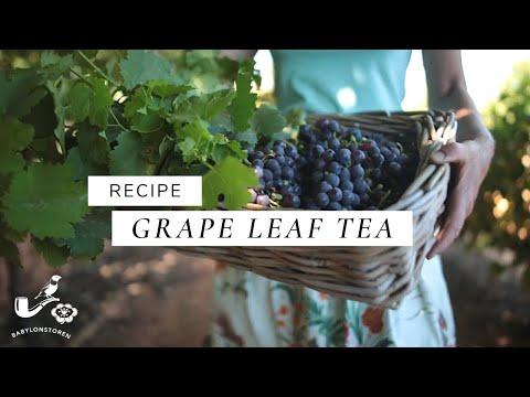 Making Grape Leaf Tea