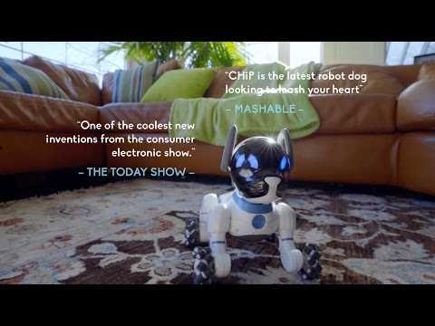 Hey CHiP - The Obedient Robot Dog